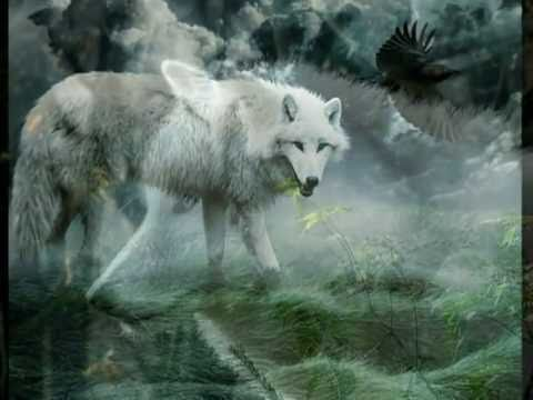 White Wolf : Nothing Else Matters