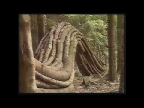 Andy Goldsworthy Naturalist Artist - P1