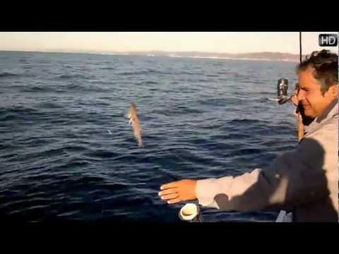 Trucos Para Pescar en el Mar