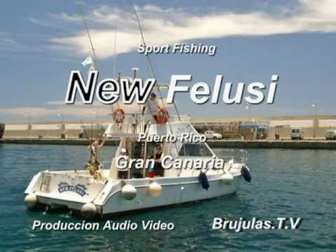 New felusi 2012