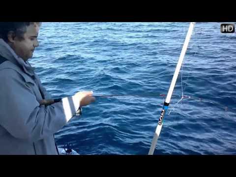 Tecnicas de Pesca en Barco