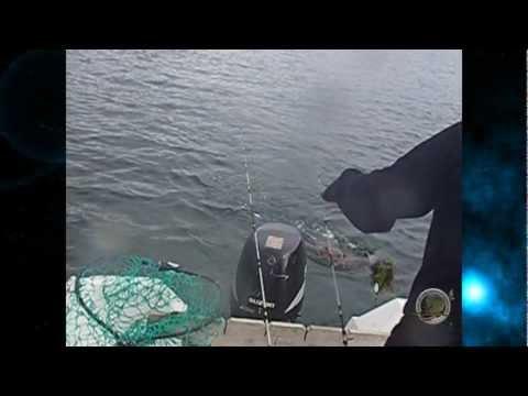pescadoradatanero ËPICA BATALLA fishing pesca peche