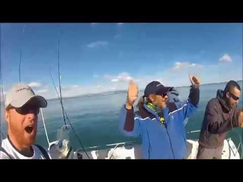 pesca a spinning, locura de anjovas,