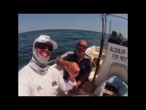 tunas and friends 2014 Ebro delta