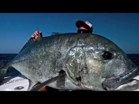 Fishing Big Gt Popping in oman