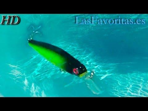 Pruebas de Señuelos Artificiales de Pesca