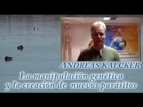La manipulación genética y la creación de nuevos parásitos, ANDREAS KALCKER