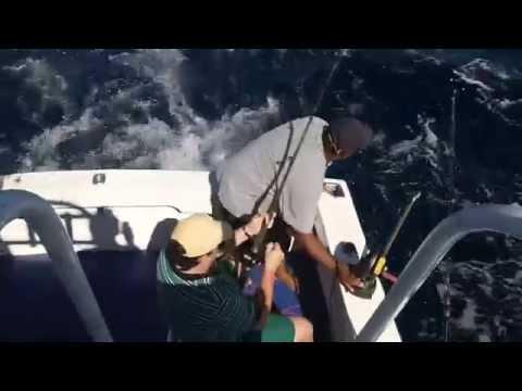 Pesca de Pez Vela en Cancún - Andres Stangalini