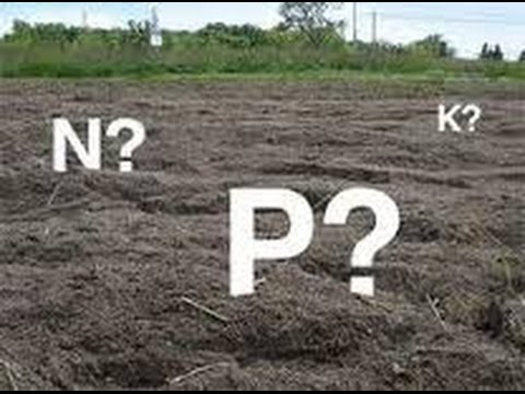 Fertilización del Suelo para Agricultura - Abono Orgánico o Químico? - TvAgro por Juan Gonzalo Angel