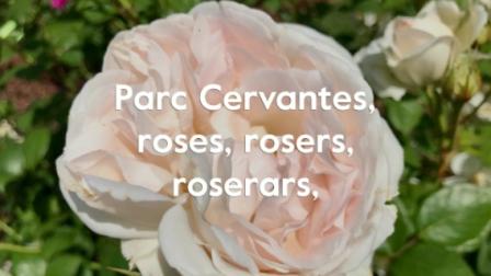 Parc Cervantes, roses, rosers, roserars, 13