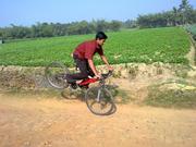 rony bhattacharya