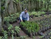 Jorge Armando Rivera