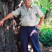Pálfi Jenő