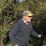 Kálmán Gergely