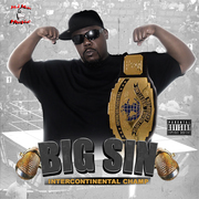 BIG S.I.N