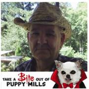 Bill Gilbert