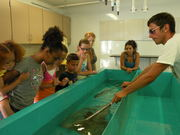 "TILT KidsTrek: ""Ichthyologists (Fish Scientists) for a Day"""