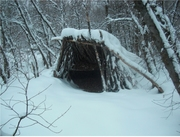 Is that an Igloo? Survival shelters at the Plainsboro Preserve