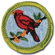Boy Scouts Bird Study Merit Badge