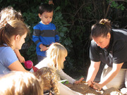 Nature Play Days at Reid Park Zoo