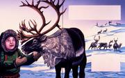 caribou boy