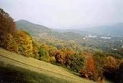 Barangolás az őszi erdőben