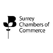 Surrey Chambers Networking Evening, Godalming
