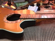Giannini Ovation Copy Guitar