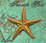 Seaside Post, starfish