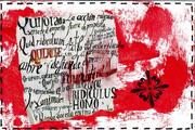 11-15-2012 4 erica durante
