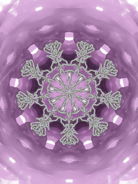 Gingko Snowflake