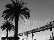 SF Bay Bridge black and white