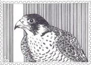 Out: Barcode Bird