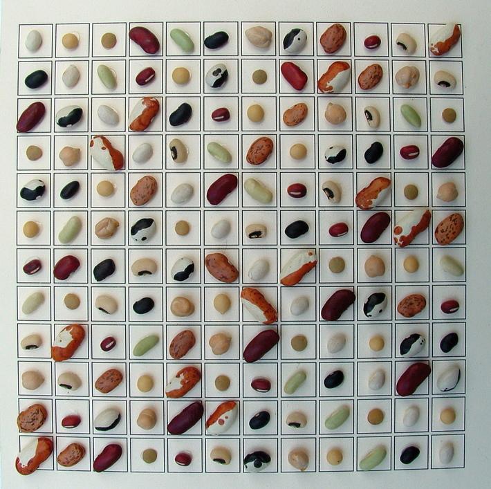 12 Bean Matrix
