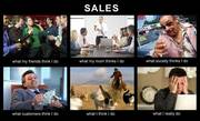 Sales Professional - What Other People Think (Hilarious!)