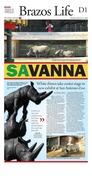 San Antonio Rhinos