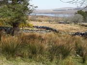 Gaeltacht Thiar Thir Chonaill, paintout in Sweet Donegal.