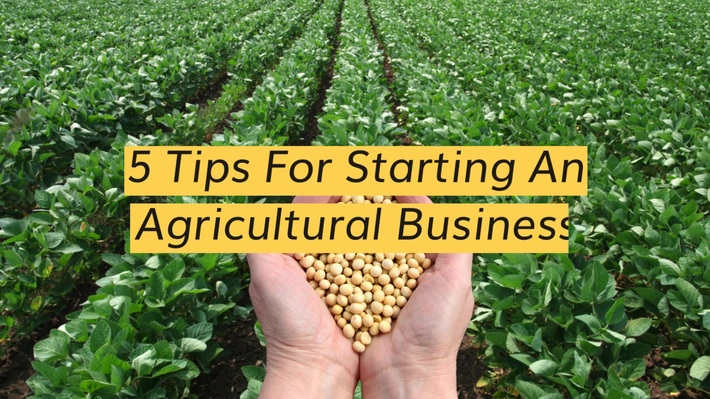 5 Tips For Starting An Agricultural Business