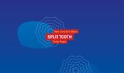 International Festival of Arts and Ideas: Split Tooth