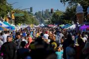 20th Annual Laurel StreetFair World Music Festival