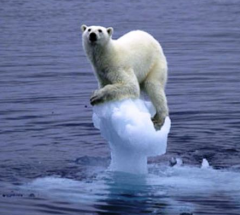 Ice melting: could the cause be natural, and other than global
