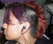 Dual Colour Bihawk