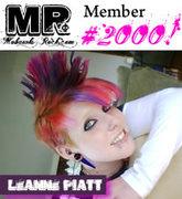 Mohawks Rock Member 2000