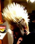 Blonde 'hawk.
