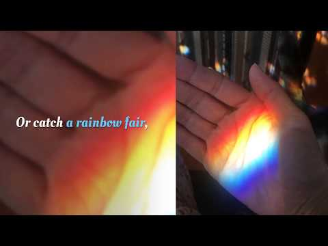 If I Could Catch a Rainbow