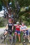 Otways Cycling 100 kms on an Mountain Bike