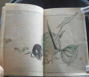 ehon10 Colour woodblock print book 1881 Japanese