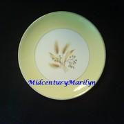 Century Service Corporation Autumn Gold Salad Plate Homer Laughlin Design
