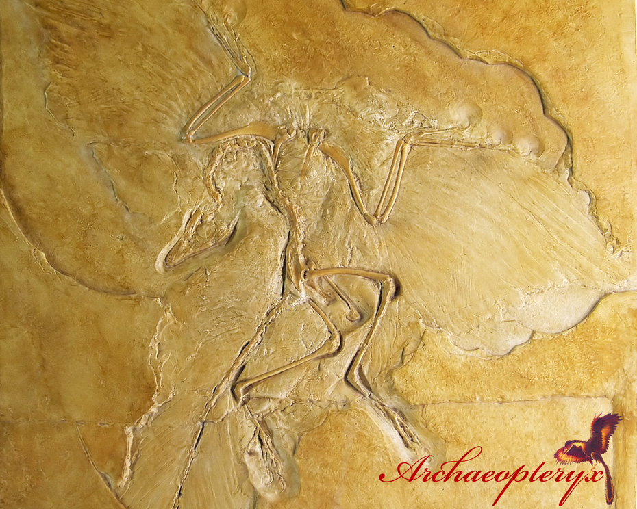 Archaeopteryx Wallpaper