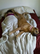 This is how we slept when I was working nights